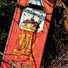 the last drop, abandoned petrol pump, Saltmills, County Wexford, Ireland by Andrew Jones
