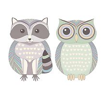 Raccoon & Cool Owl by Jean Gregory  Evans