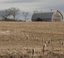 Farmland by Scott Ruhs