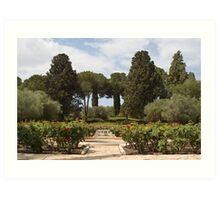 Garden at Rothschild's Mausoleum Art Print