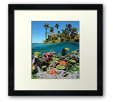 Tropical island and colorful underwater marin life Framed Print