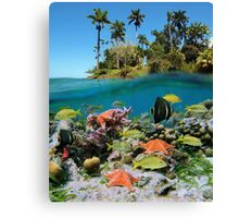 Tropical island and colorful underwater marin life Canvas Print