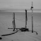 Ephemera #3 (Beach Art, Haida Gwaii, Canada) by Edward A. Lentz