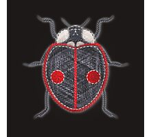 LadyBug - Asian Photographic Print