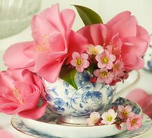 Pretty in Pink by Catherine Wood