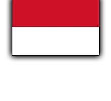 Indonesian Flag, Flag of the Republic of Indonesia, Jakarta by TOM HILL - Designer