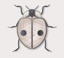 LadyBug - White by Sunflow