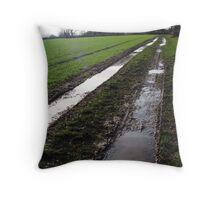 Muddy Field, Baschurch, Shropshire Throw Pillow