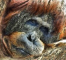 Now I Lay Me Down To Sleep by Bunny Clarke