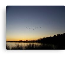 Sunset and Flying V formation Canvas Print