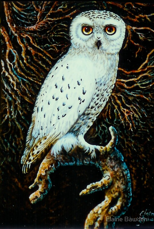Quot snowy white owl relief wood carving painted with