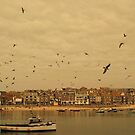 Coastal Town by BethXP