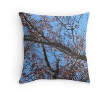 Cherry Blossoms Unblossomed Throw Pillow