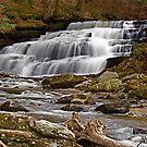 Beecher Creek Falls by Jeannette Sheehy