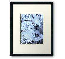 Nubster Framed Print