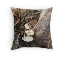 tiny shelf fungus Throw Pillow