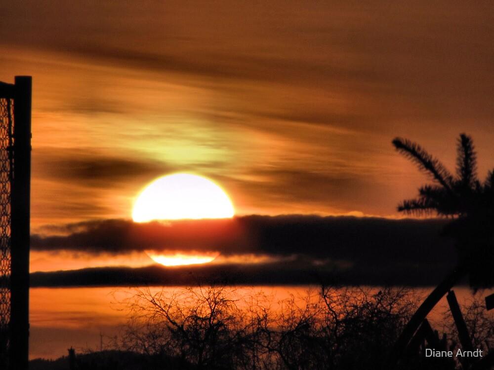 Easter Sunrise...2010 #2 by Diane Arndt