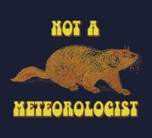 Not a Meteorologist Groundhog Day Baby Tee