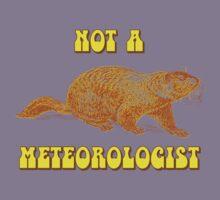 Not a Meteorologist Groundhog Day Kids Tee