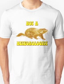 Not a Meteorologist Groundhog Day T-Shirt
