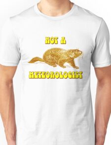 Not a Meteorologist Groundhog Day Unisex T-Shirt