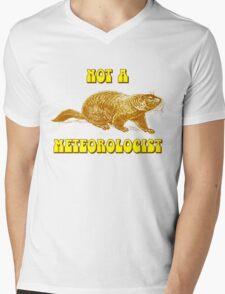 Not a Meteorologist Groundhog Day Mens V-Neck T-Shirt