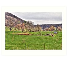 Lonely Pasture Art Print