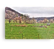 Lonely Pasture Metal Print