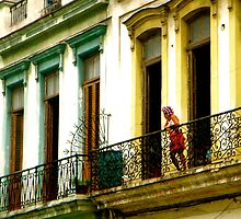 Curious Curlers in Cuba by Valerie Rosen