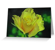 Yellow Rose - Midas Touch Greeting Card