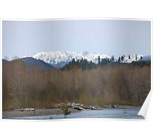 Skokomish River and Olympic Mountains Poster