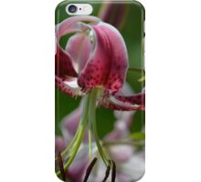Star Gazer Lily Close Up iPhone Case/Skin