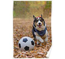 Four-legged Soccer Player Poster