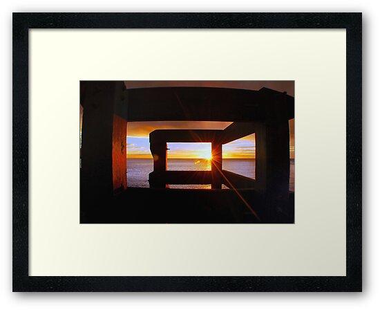 Last Light... by Basia McAuley
