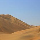 Dunes of Peru by David McGilchrist