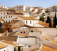 Ronda - Whitewashed village of Andalucia  by Mal Bray
