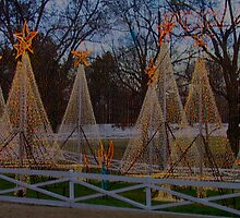 Graceland at Christmas by bereid