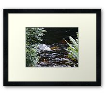 Franklin River, Wild Rivers UNESCO World Heritage Site Tasmania Framed Print