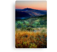 Sunset over an Andalucian Landscape, Spain. Canvas Print