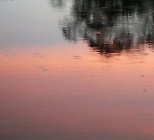 Sunset reflecting in the moat of Angkor Wat, Cambodia by Adrienne Bartl