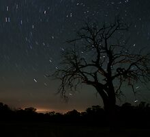 Star Trails by Arthur Koole