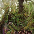 Tasmanian Rain Forest. by Elaine Game