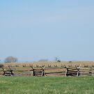 Bloodiest  Battlefield ~ Antietam by Jeanie93