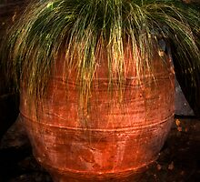 The Vase by Richard Hamilton-Veal