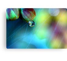 Rainbow Web Canvas Print