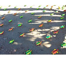 plastic migration Photographic Print