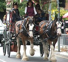Clydesdale Horse & Buggy by ScenerybyDesign