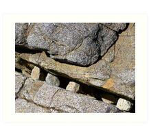 Rock teeth - Fingal Bay NSW Art Print