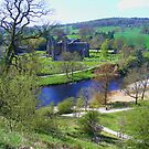Bolton Abbey fron High by Ray Clarke