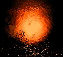 Fire ball - river sunset reflection by Penny V-P